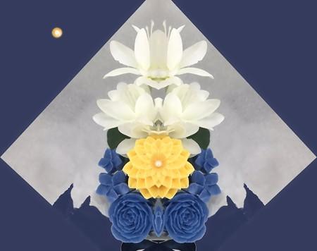 菊月夜-03b