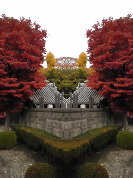 西澄寺-01b参道から(1-2)