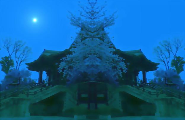 目黒不動尊-桜14b(1-4)