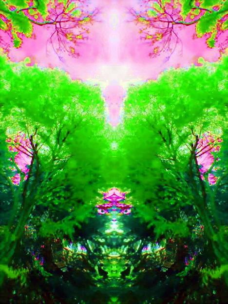 木の精_ククノチ-03