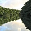 写真: 仲間川