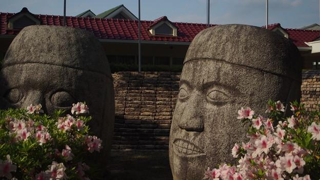 太陽公園 石のエリア (3)