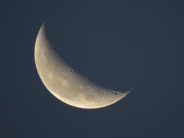 早朝の月(月齢22.8)