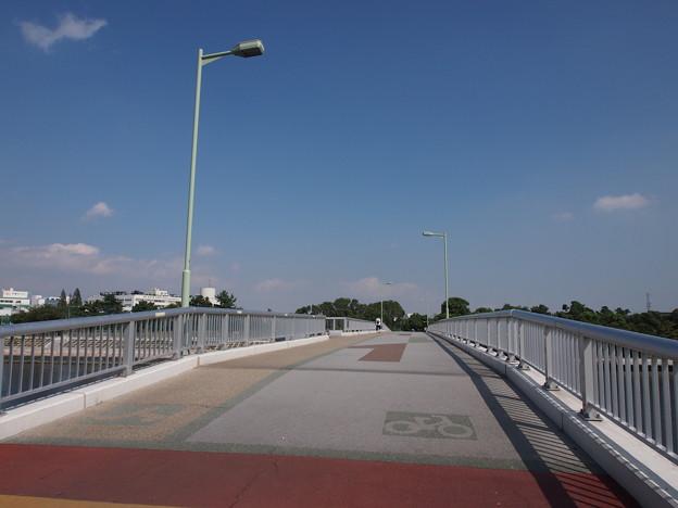 大森東避難橋