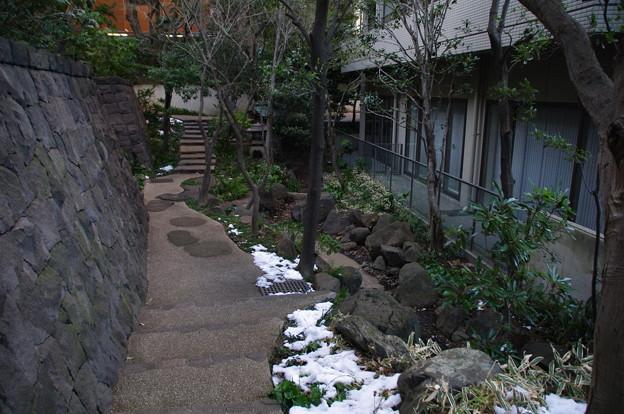 写真: 小石川パークタワーの極楽水