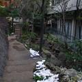 小石川パークタワーの極楽水