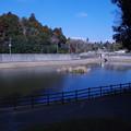 Photos: 公津の杜の調整池