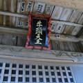 Photos: 根山神社
