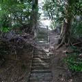 鷲宮神社の危ない石段
