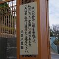 Photos: 久里浜霊園