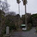 Photos: 本行寺