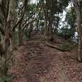 Photos: 三浦富士の小ピーク