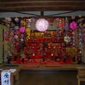 写真: 武山不動院の雛祭り