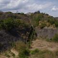 写真: 緑の階段
