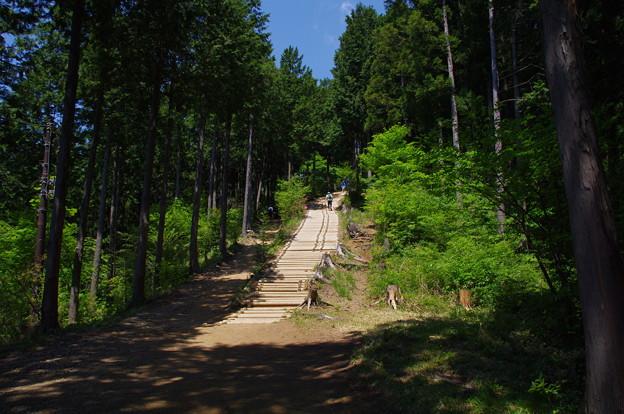 日の出山の登山道
