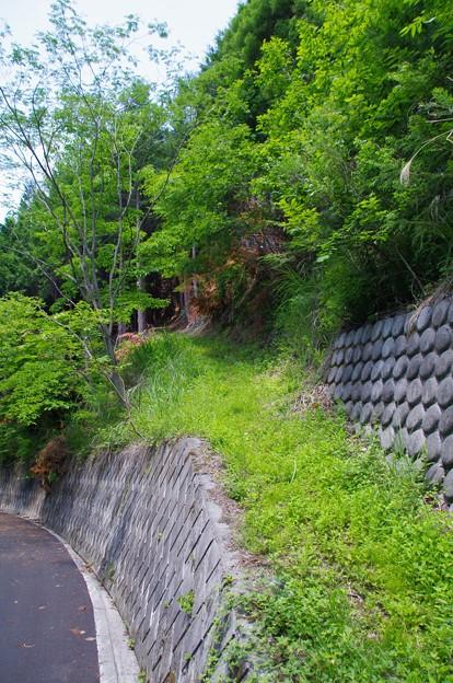 尾根の登山道