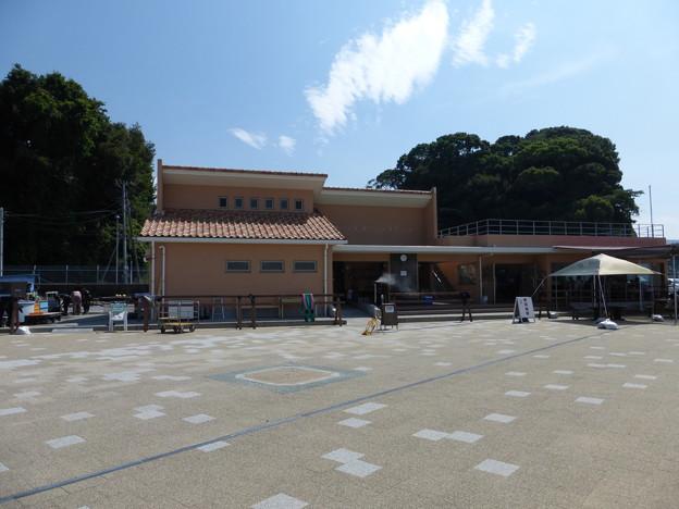 平沢マリンセンター