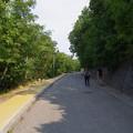 エルジェーベト展望台への急坂