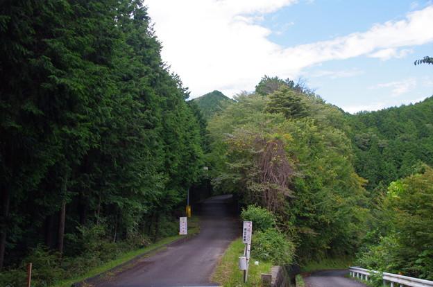 関八州見晴台の山