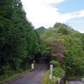 写真: 関八州見晴台の山
