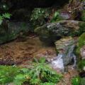 写真: 三滝川
