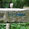 写真: 林道猿岩線
