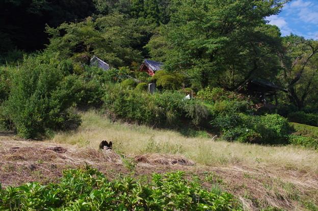 写真: 桂木観音(標高285m)