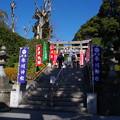 Photos: 沼袋氷川神社