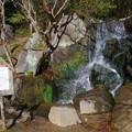 Photos: 葉山しおさい公園