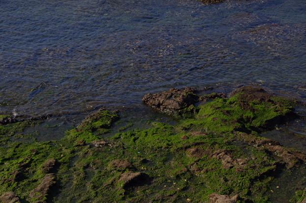 Photos: 葉山の海
