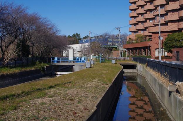 見沼代用水と赤堀用水路