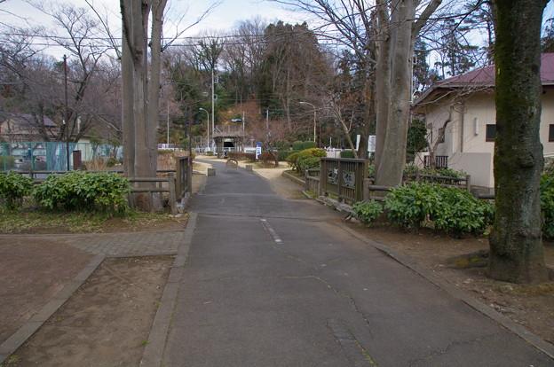 導水管の上の道