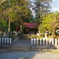 Photos: 越生神社