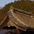 Photos: 龍台寺