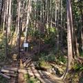 Photos: 日和田山の男坂下