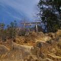日和田山の二の鳥居