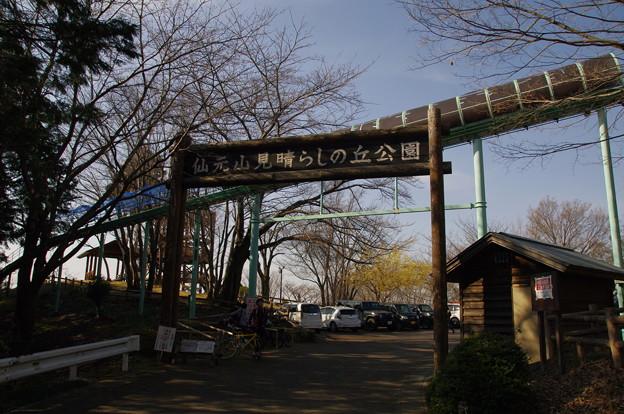 Photos: 仙元山見晴らしの丘公園