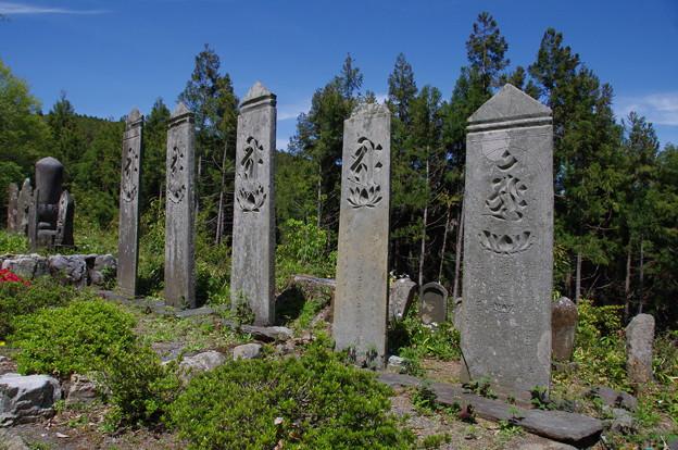 Photos: 慈光寺山門跡の板碑群