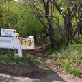 笠山への道