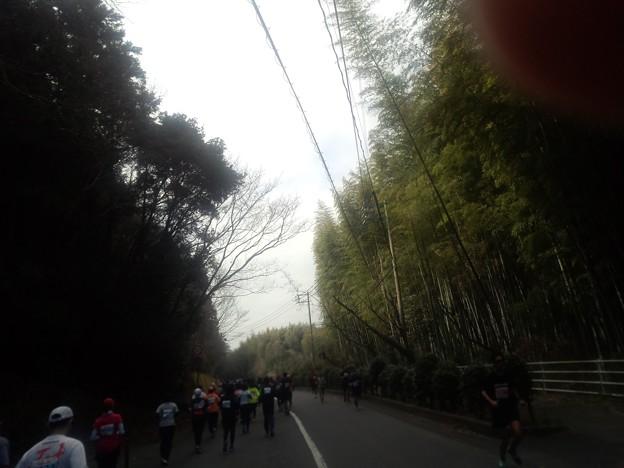 DCF00003 岩国錦帯橋マラソン