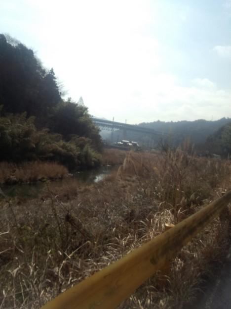 DCF00014 岩国錦帯橋マラソン
