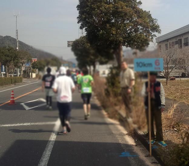 DCF00017 岩国錦帯橋マラソン あと8km