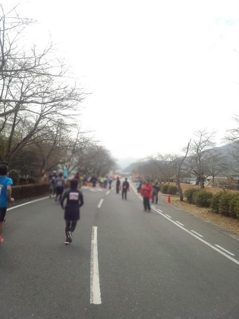 DCF00023 岩国錦帯橋マラソン