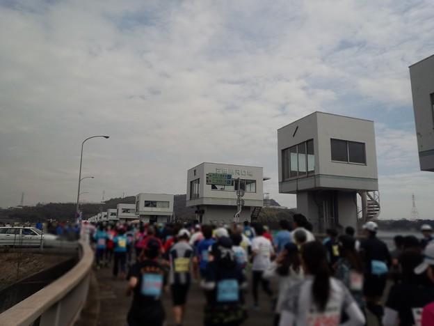 180319 011 福山マラソン