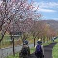 Photos: お散歩日和