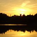 Photos: やっと陽が出てきた