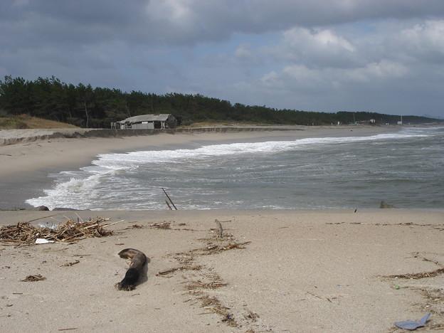 弓ヶ浜半島