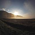 Photos: 霧の中の日の出