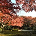 写真: 汎庵万里庵の紅葉