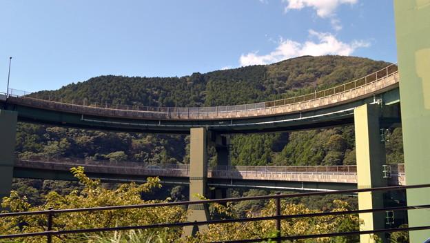 ループ橋の内側
